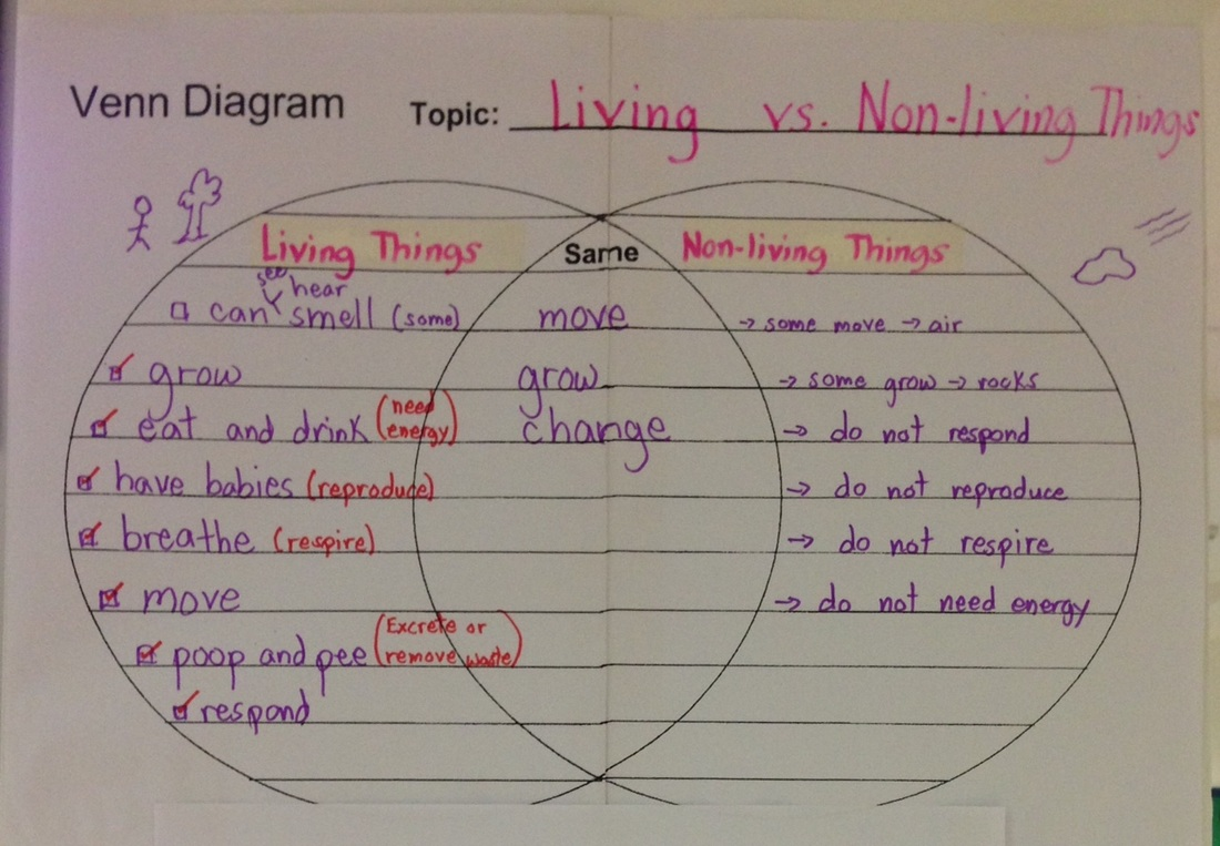 Blog archives grade 2p 2014 2015 we observed different living organisms and non living things we listed the characteristics of both ccuart